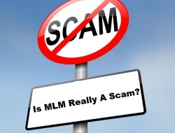 MLM Industry – Can You Really Make Money In MLM Or Is It Just A Scam?
