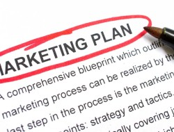 The 5 Essential Requirements Of A Successful MLM Marketing Plan